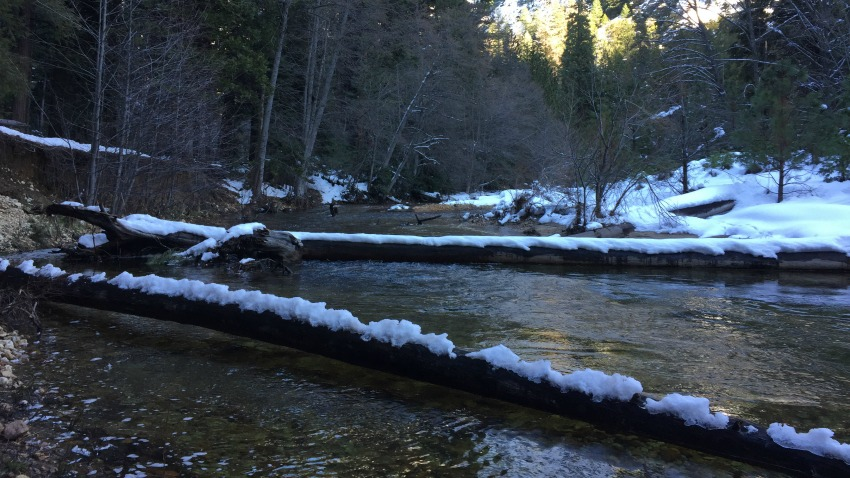 The snowy Merced River on the walk to Mirror Lake.